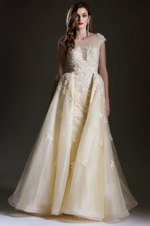 copy of Elegant Embroidered Sheath Gown with OverSkirt
