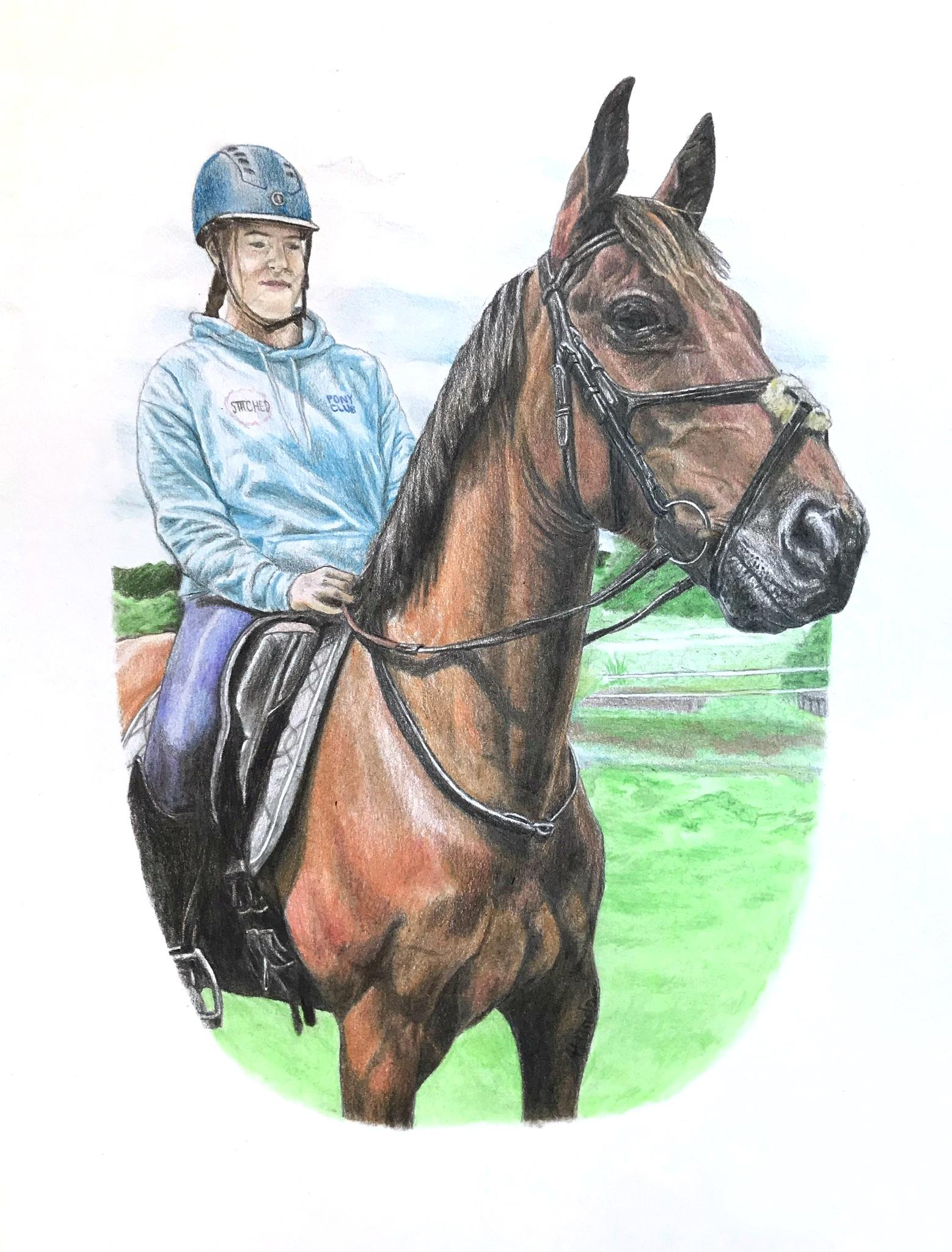 'Horse Study'