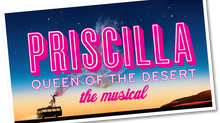 New Wardrobes 2016/17 - Priscilla, Queen of the Desert