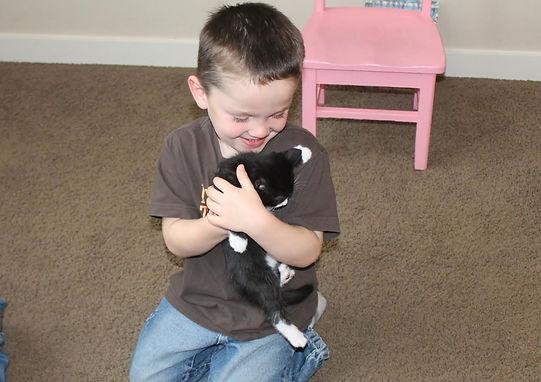 Preschool kitten