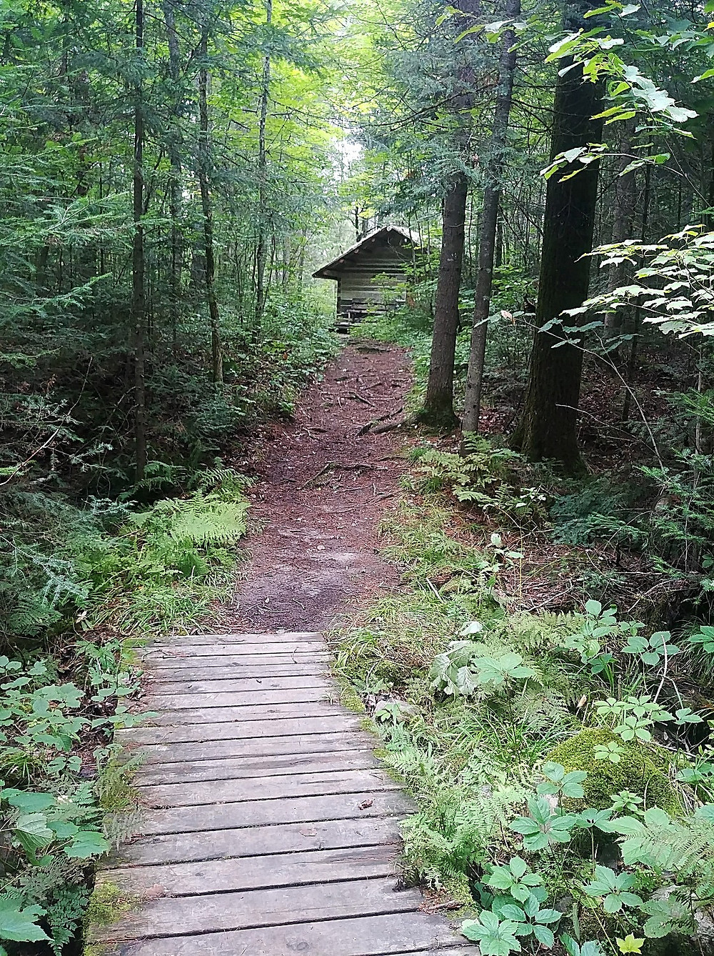 Old cabin at Eau Claire Gorge Conservation Area