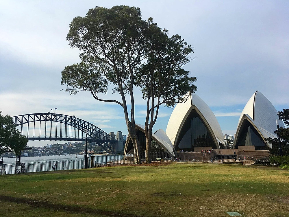 Harbour Bridge and Sydney Opera house view from a city park