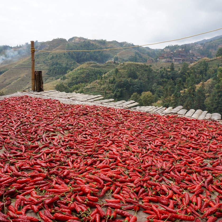 Red chilis drying in the sun at Longji Rice Terraces