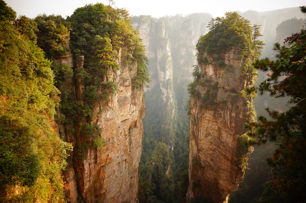 Avatar mountains / Heavenly Pillar in Zhangjiajie National Forest Park