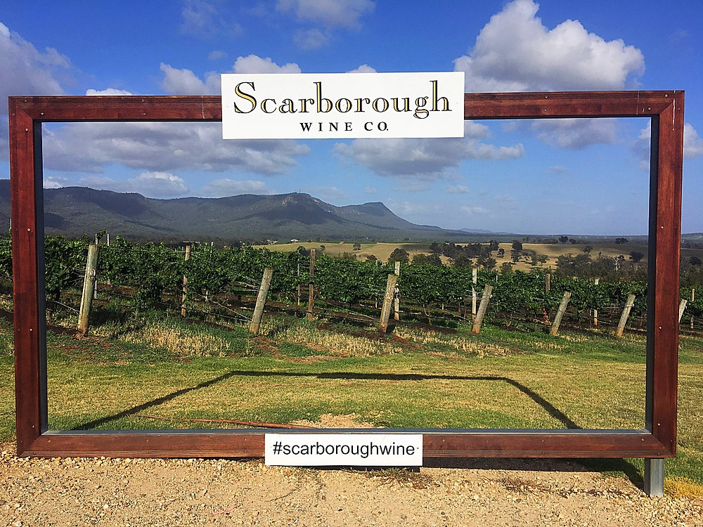 Giant Scarborough Wine Company picture frame with mountain and vineyard view