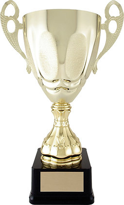 Strattura Cup Trophy