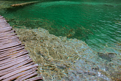 Crystal Clear Water, Plitvice Lakes