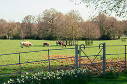 Gate Street Barn Fields