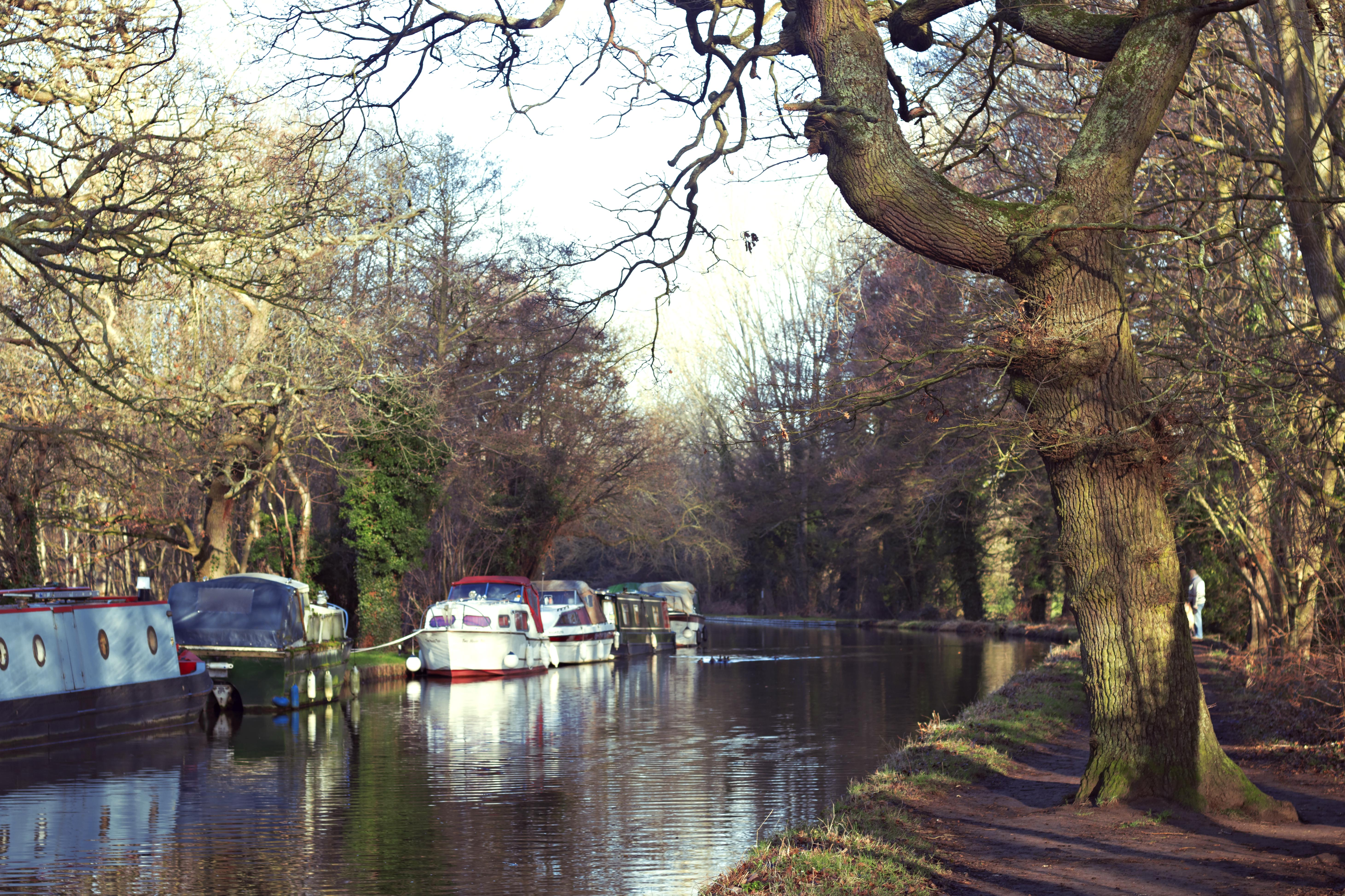 River Wey Photography