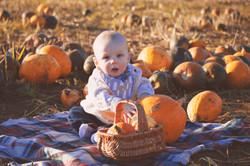 Family Pumpkin Photography