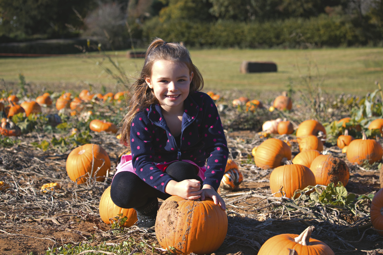 Rogate Pumpkin Patch Photography