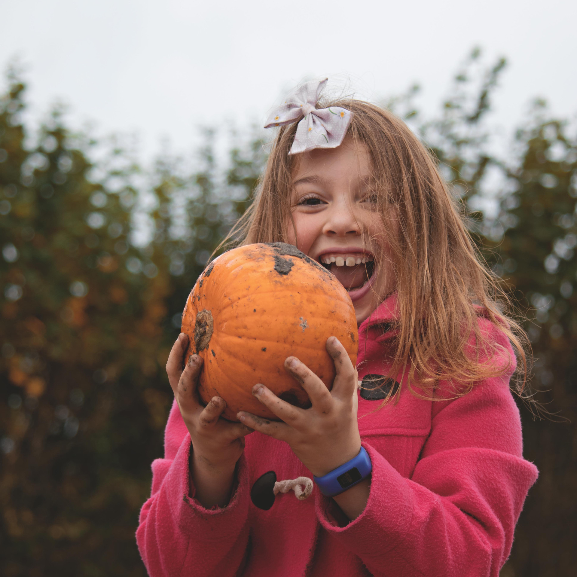 Pumpkin Family Portraits