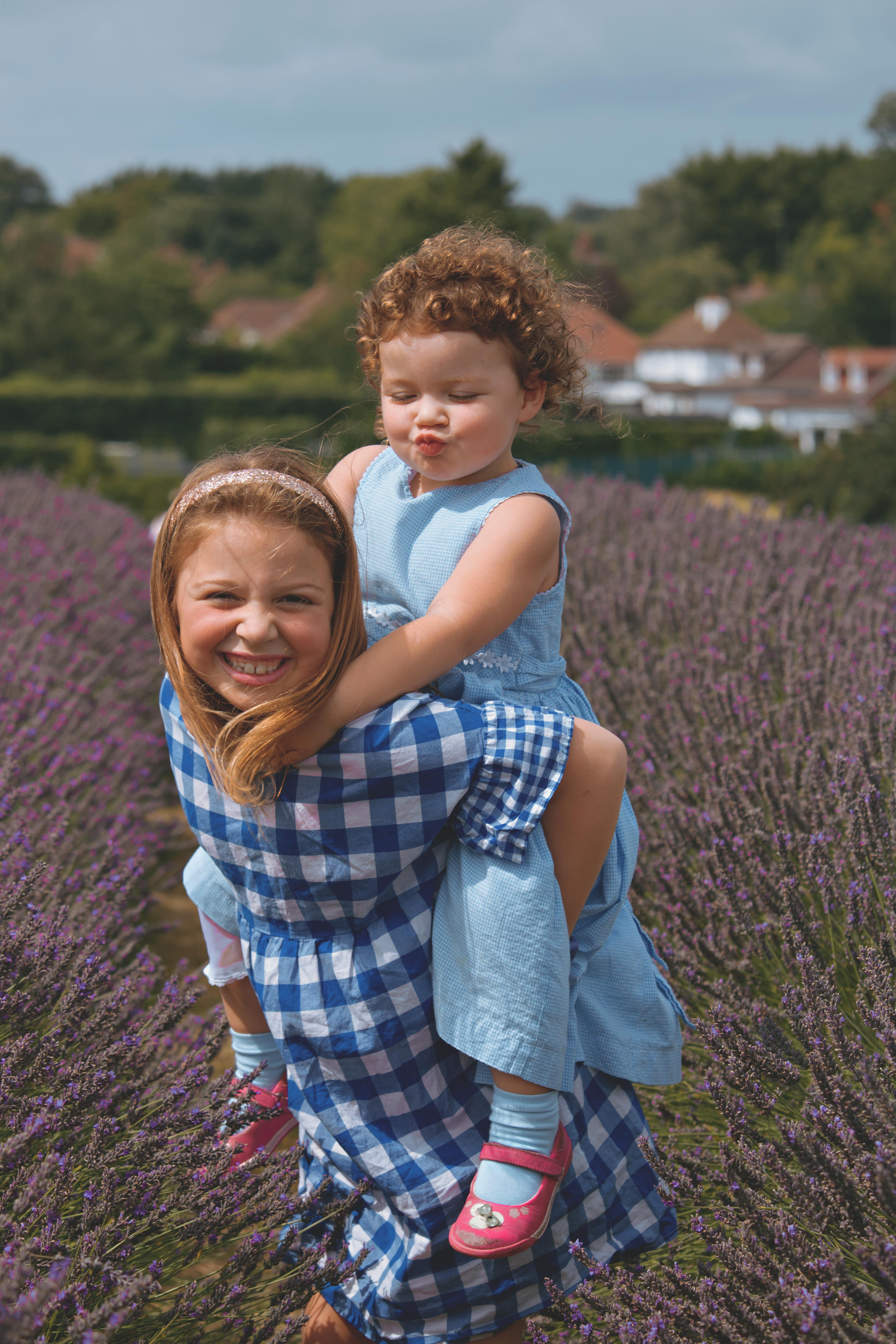 Lavender Photosession in Surrey