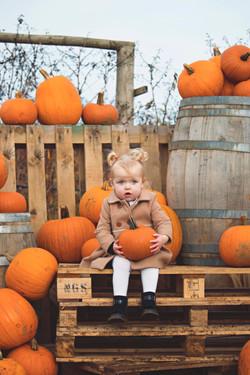 Surrey Pumpkin Family Shoot