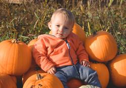 Pumpkin Photography in Durleigh Marsh