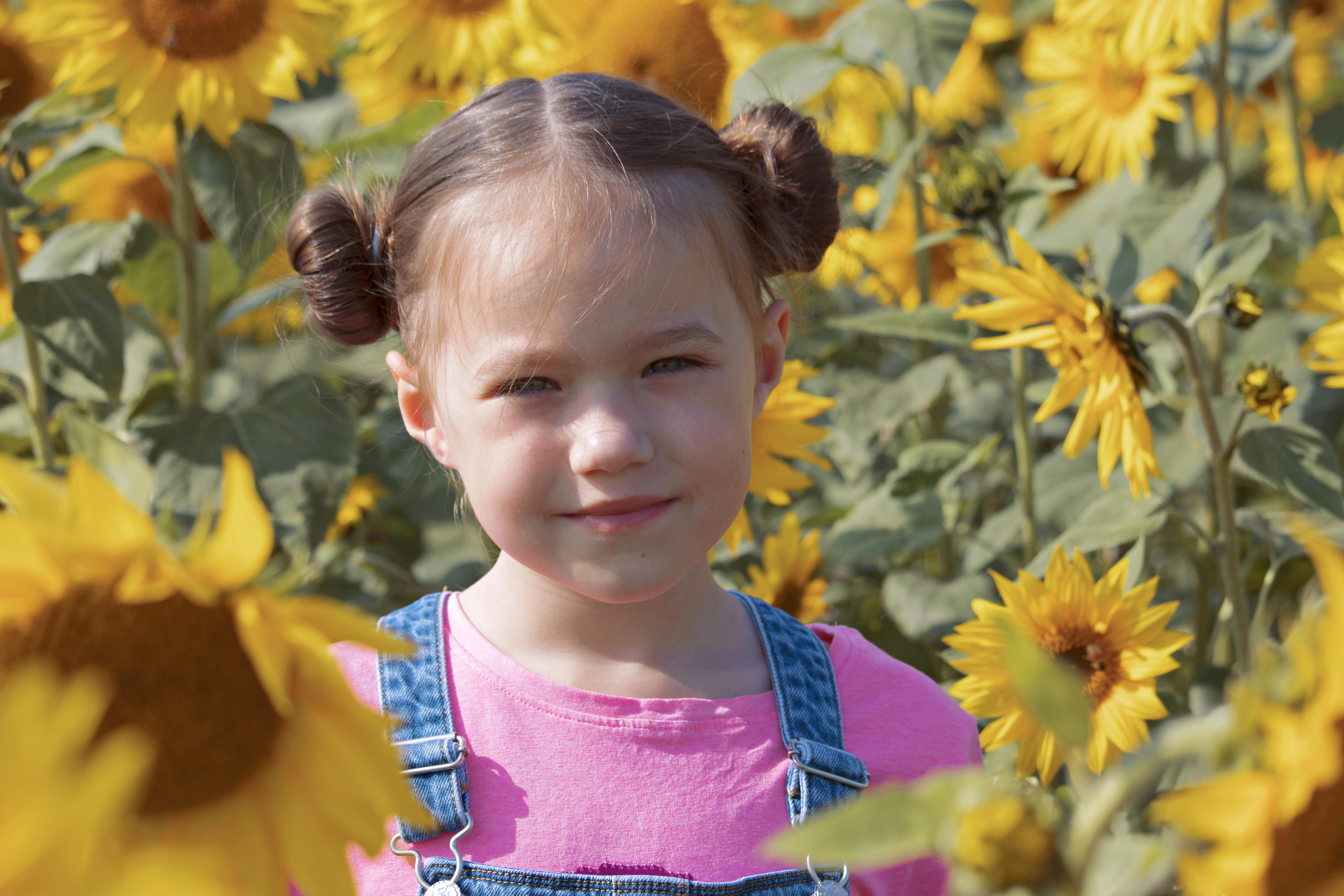 Family Portraits at the Sunflowers