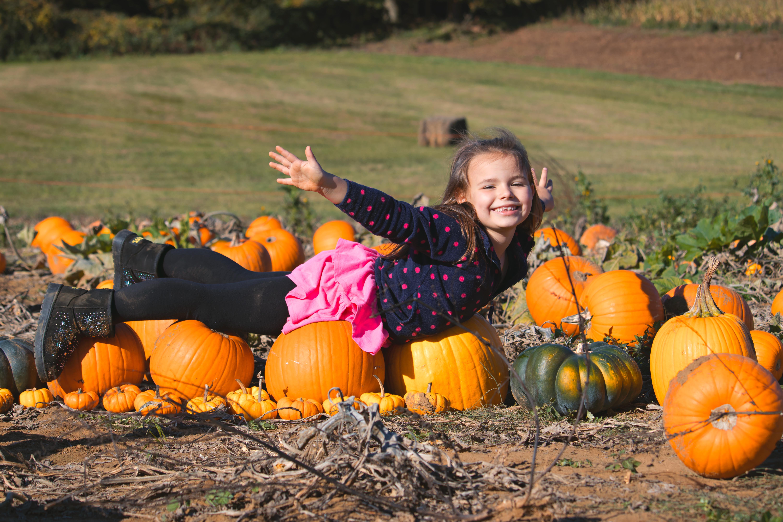 Relaxed Family Photography Pumpkin Mini Shoot