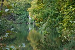Peaceful Landscape Photography