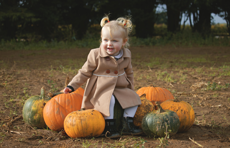 Pumpkin Family Portraits in Surrey