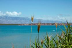 Nin's Lagoon