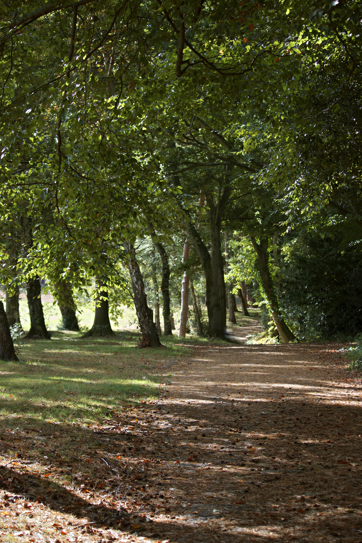 Beautiful Nature Photos Surrey