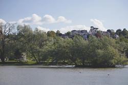 English Countryside Lake & Willow Trees