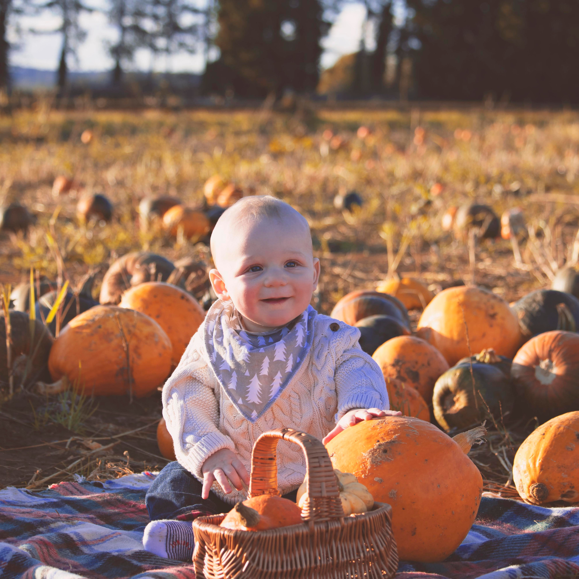 Family Photography at Golden Hour at the Pumpkin Fields