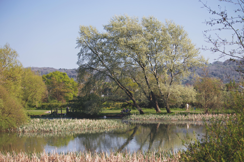 Beautiful English Country Lake