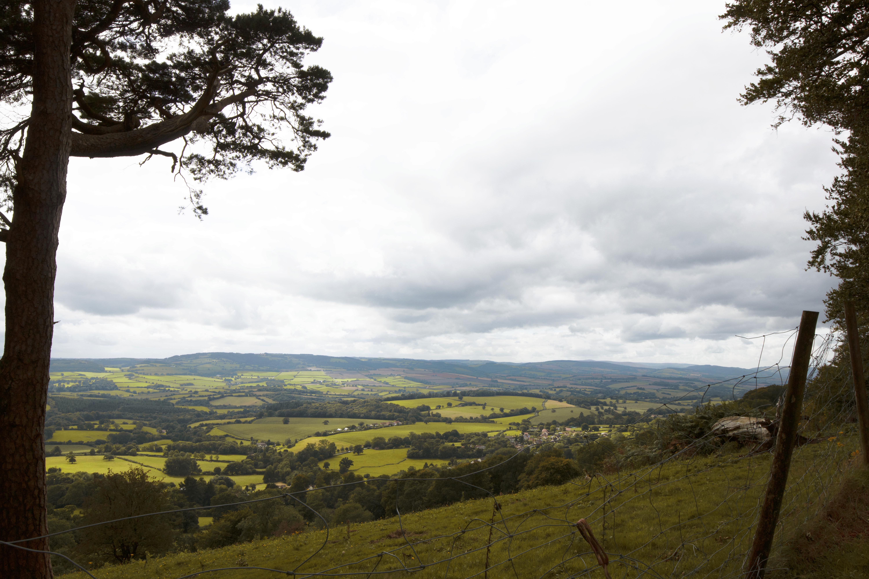 Quantock Hills, South West England