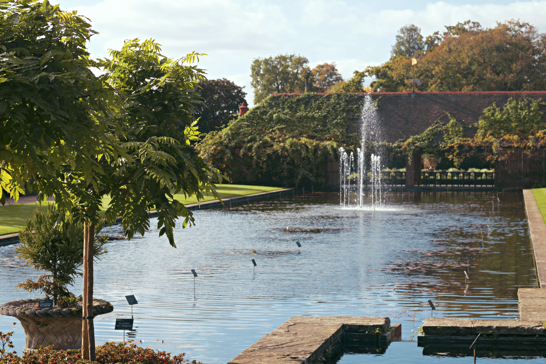 Wisley R.H.S Gardens