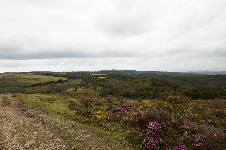 Stunning Views of Quantock Hills