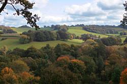 Views of Surrey Hills