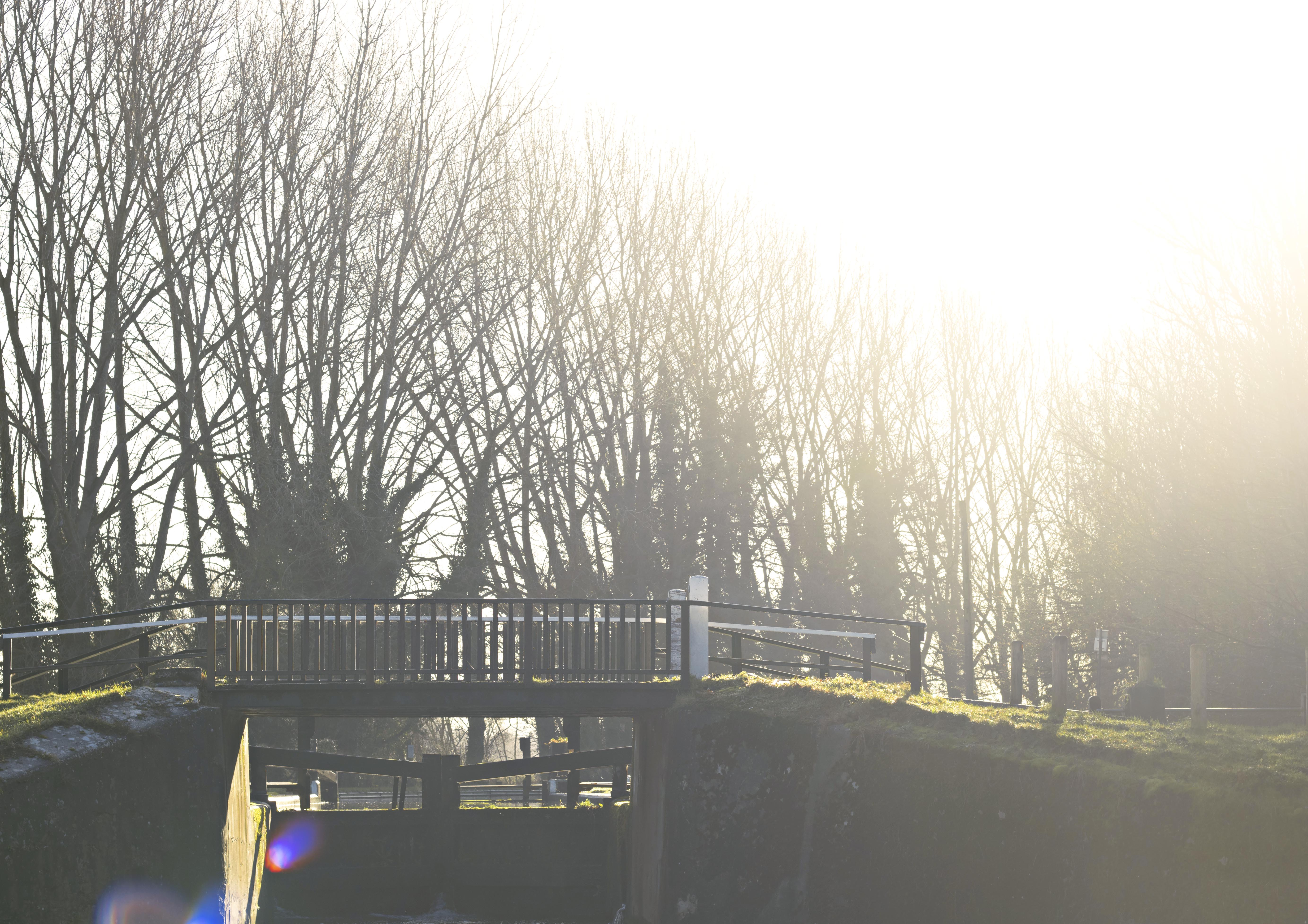 Beautiful Morning Winter Light Photography