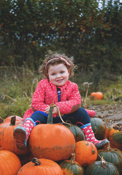 Seasonal Pumpkin Photography
