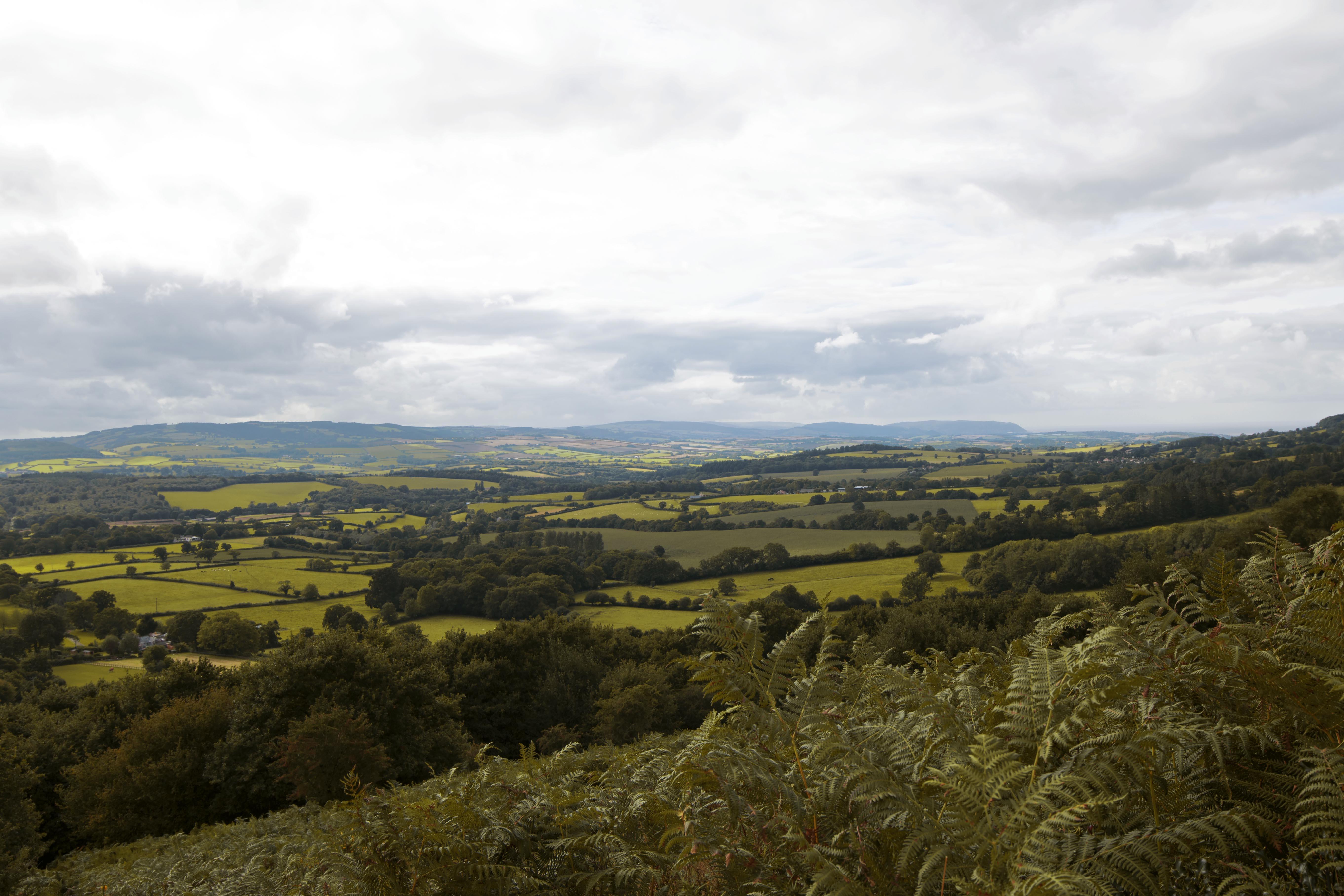 Quantock Hills, Somerset