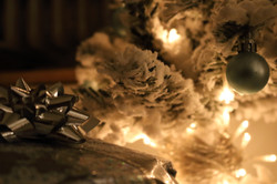 Macro Christmas Tree