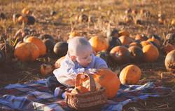 Golden Hour Pumpkin Photography