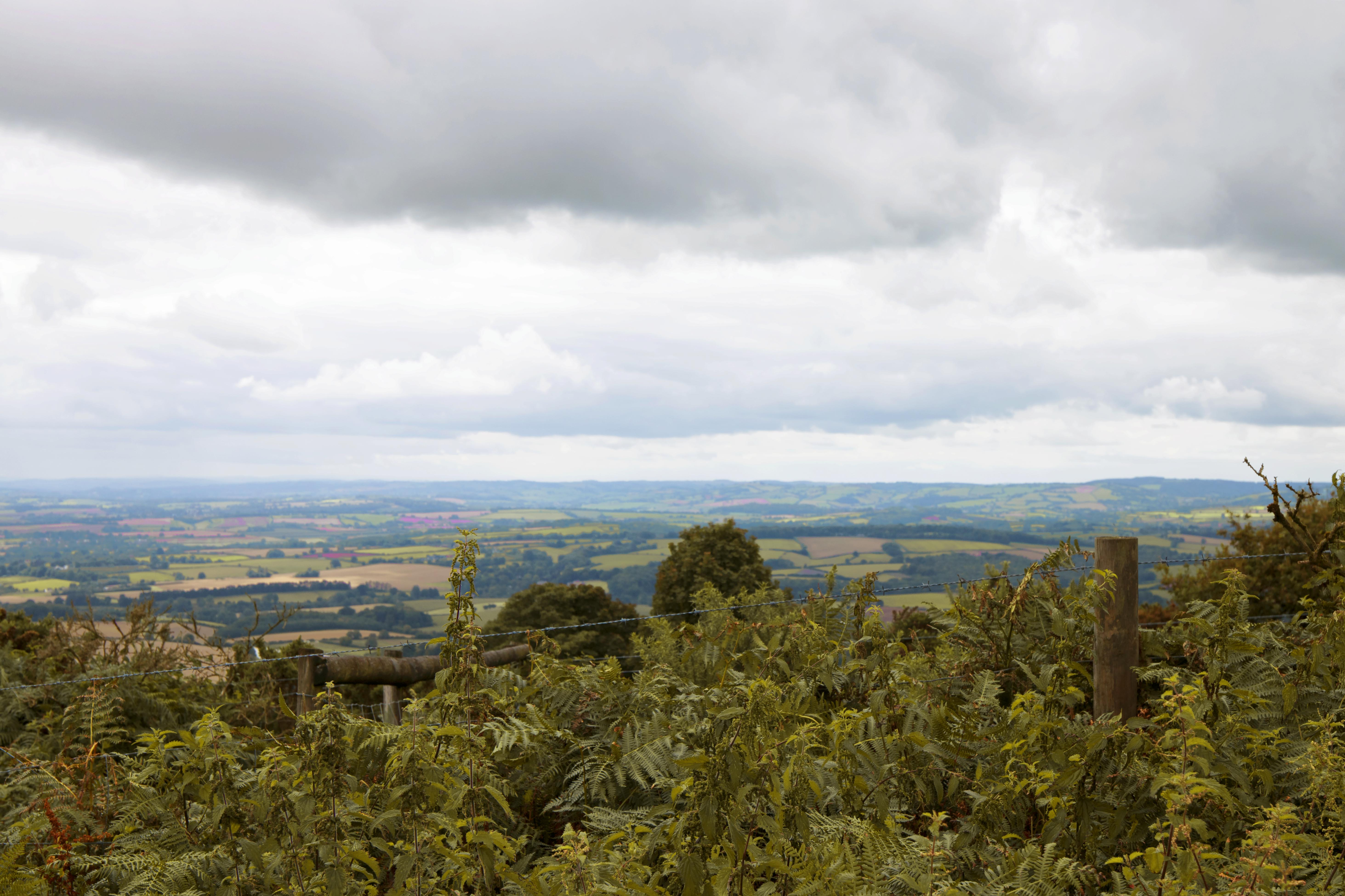 Wide Views of Quantock Hills