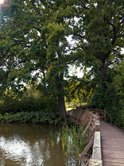 Landscape Photography Wisley R.H.S. Gardens