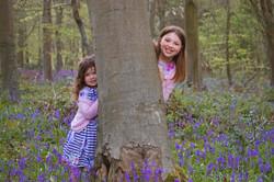 Family Portraits in the Bluebells