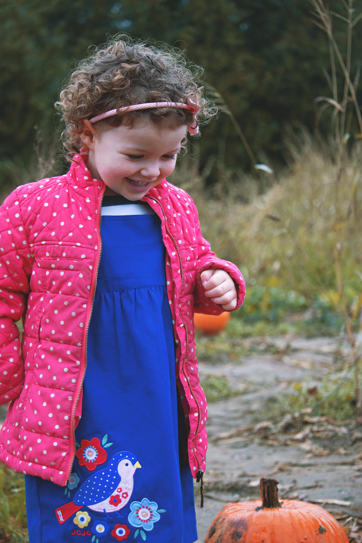 Pumpkin Photography in Surrey