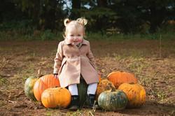 Pumpkin Photos in Surrey