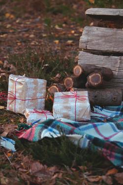 Christmas Mini Set Up