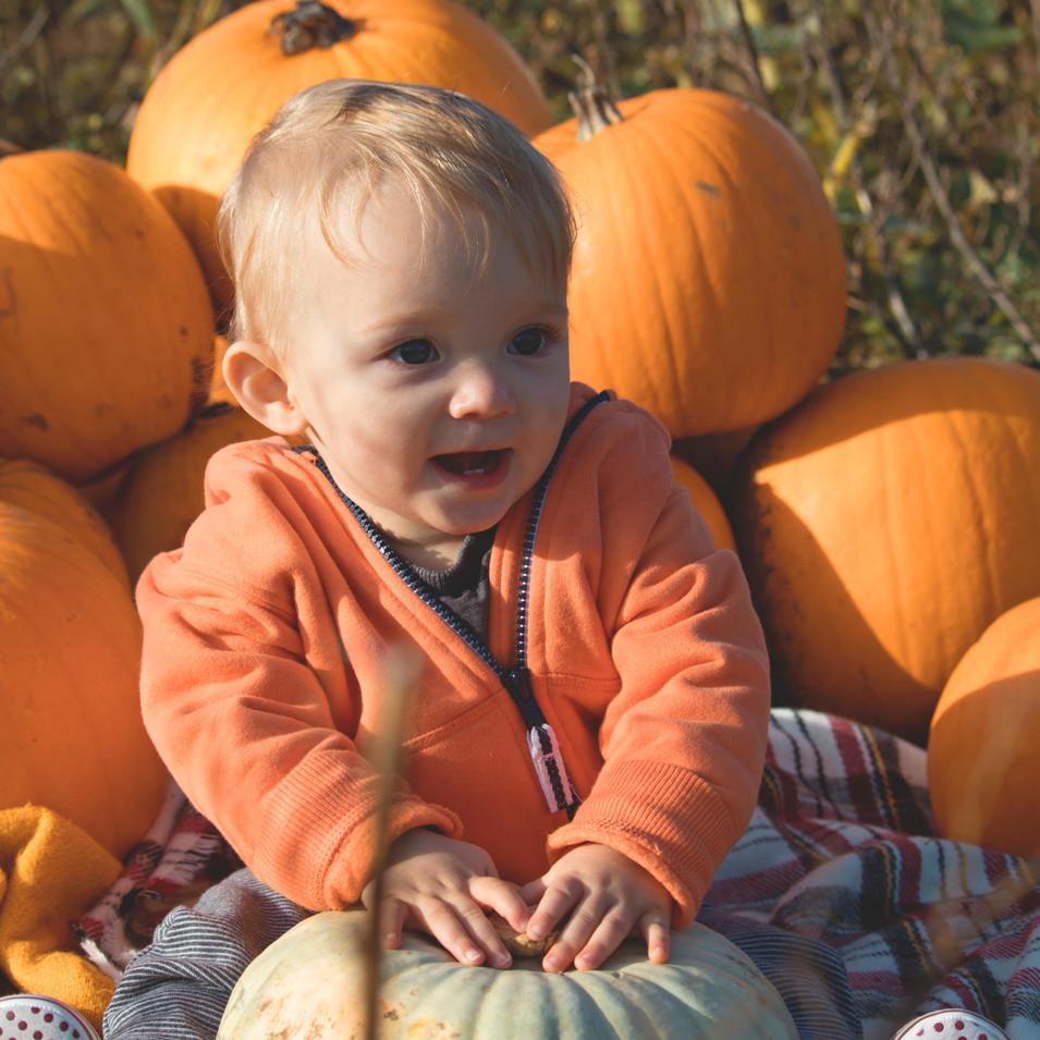 Pumpkin Family Photoshoot in Hampshire