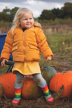 English Pumpkin Picking