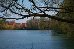 Landscape Photography in Surrey U.K.