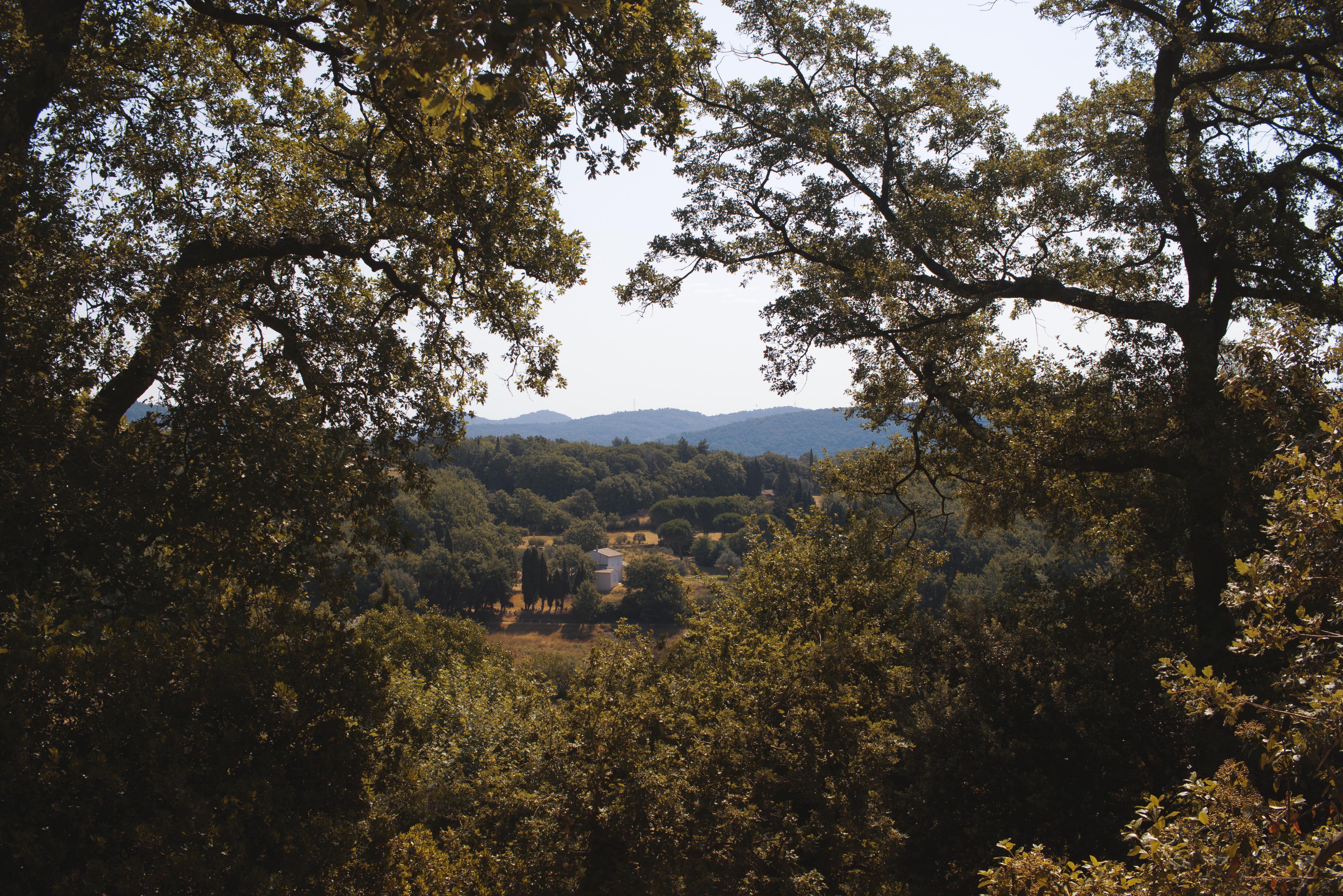 La Garde-Freinet Countryside