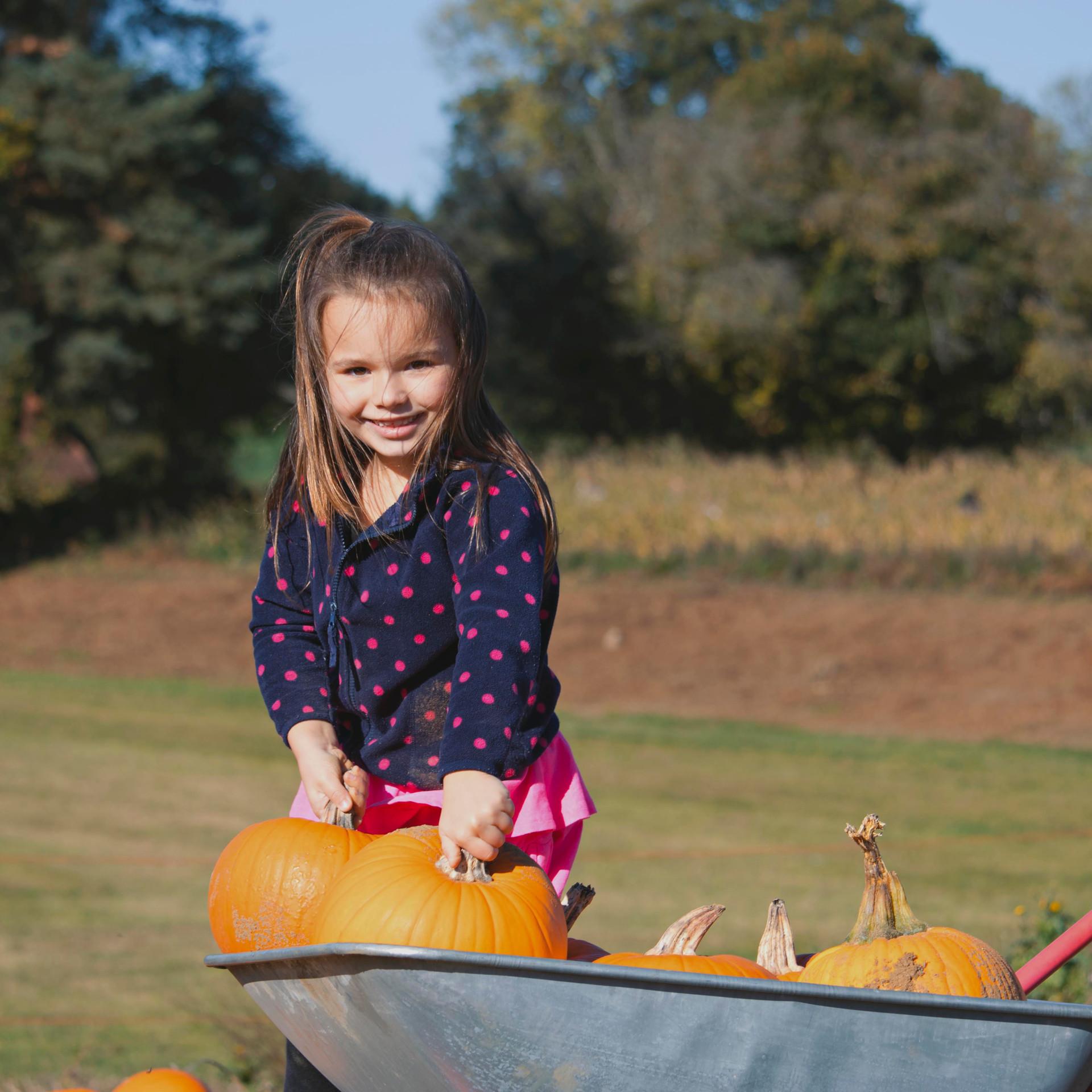 Pumpkin Family Photography