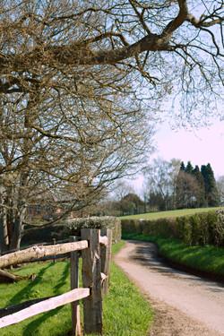 Gate Street Barn, in Surrey, Wedding Grounds