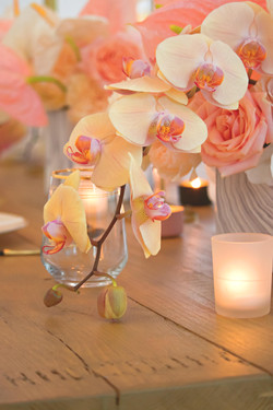 Stylised Shoot with Boutique Blooms & Pink Palm Events